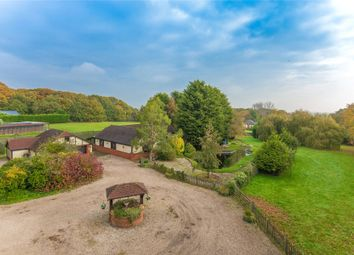 Thumbnail 4 bedroom detached house for sale in Stock Road, Stock, Ingatestone, Essex