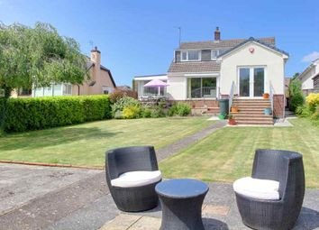 Thumbnail 5 bed detached bungalow for sale in Philip Avenue, Barnstaple