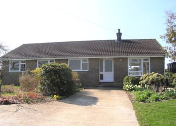 Thumbnail 4 bed detached bungalow to rent in Higher North Field Farm, Beaminster, Dorset