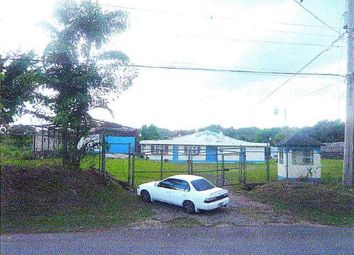 Thumbnail Industrial for sale in Darliston, Westmoreland, Jamaica