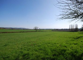 Thumbnail 2 bed detached house for sale in Bosbury, Ledbury