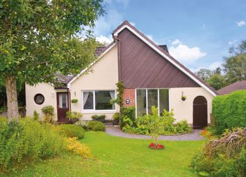 Thumbnail 4 bed detached house for sale in Newton Crescent, Dunblane, Stirling