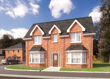 Thumbnail 4 bed detached house for sale in Millreagh, Carrowreagh Road, Dundonald