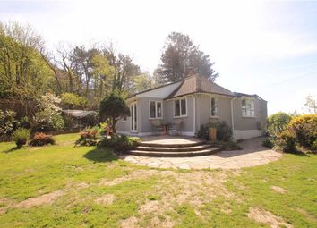 Thumbnail 3 bed detached bungalow for sale in Rye Road, Hastings, East Sussex