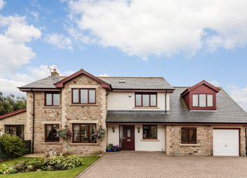 Thumbnail 5 bed detached house for sale in Springfield, Longhoughton, Alnwick
