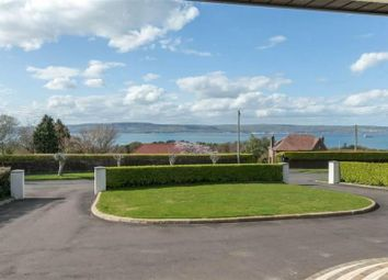 Thumbnail 4 bedroom detached bungalow for sale in Larch Hill, Holywood