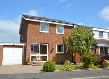 Thumbnail 4 bed detached house for sale in Larch Grove, Hamilton