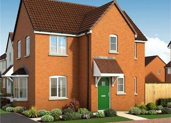Thumbnail 3 bed detached house for sale in The Coombe, Plot 179 The Scholars, Poplar Avenue, Peterborough, Cambridgeshire