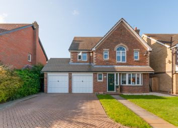 Thumbnail 4 bed detached house for sale in Pulham Avenue, Broxbourne