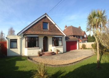 Thumbnail 5 bed bungalow for sale in Hollywood Lane, Wainscott, Rochester
