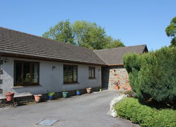 Thumbnail 4 bed detached bungalow for sale in St. Clears, Carmarthen