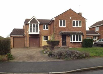 Thumbnail 4 bedroom detached house to rent in Trinity Rise, Burnham On Sea, Somerset