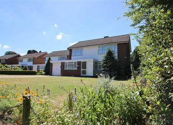 Thumbnail Detached house for sale in Thornton Dene, Beckenham