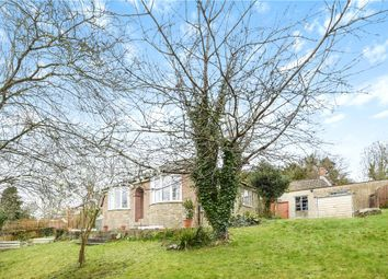 Thumbnail 2 bed detached bungalow for sale in Unity Lane, Misterton, Crewkerne, Somerset