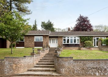 Thumbnail 4 bedroom bungalow for sale in Stonehouse Road, Halstead, Sevenoaks, Kent