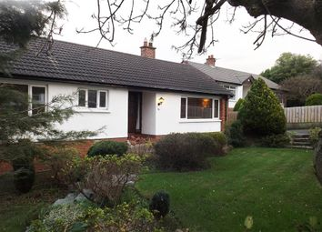 Thumbnail 3 bedroom terraced bungalow to rent in 85, Seahill Road, Holywood