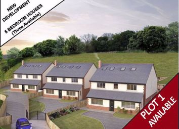 Thumbnail 5 bed detached house for sale in Ffordd Y Faenol Fach, Holywell, Flintshire