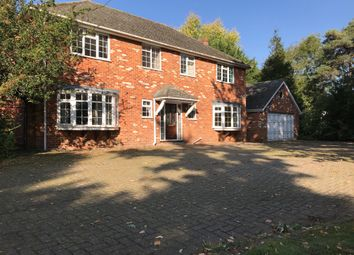 Thumbnail 5 bed detached house to rent in Main Road, Broomfield, Chelmsford