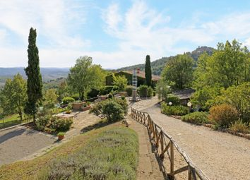 Thumbnail 6 bed farmhouse for sale in Allerona, Orvieto, Terni, Umbria, Italy