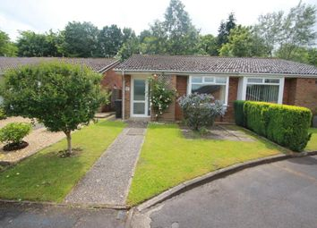 Thumbnail 2 bed bungalow to rent in Greythorne Road, Woking