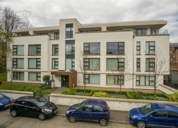 Thumbnail 2 bed flat for sale in Wellington Park Terrace, Belfast