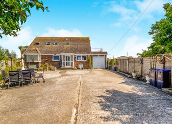 Thumbnail 4 bed detached bungalow for sale in Old Salts Farm Road, Lancing