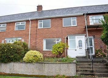 Thumbnail 3 bed terraced house for sale in New Ridley Road, Stocksfield