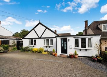 Thumbnail 4 bed bungalow for sale in London Road, Black Notley, Braintree