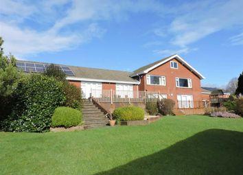 Thumbnail 4 bedroom detached house for sale in Meadow Rise, Sketty, Derwen Fawr