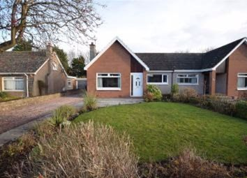 Thumbnail 4 bed semi-detached house to rent in Drumcarrow Road, St. Andrews