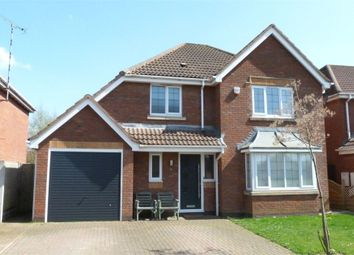 Thumbnail 4 bed detached house for sale in Forsythia Close, Lutterworth