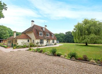 Thumbnail 4 bed detached house for sale in Emms Lane, Brooks Green, Horsham, West Sussex