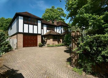 Thumbnail 5 bed detached house for sale in Dulwich Wood Park, London
