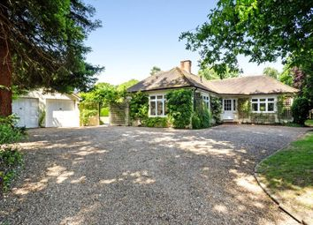 Thumbnail 3 bed bungalow for sale in Rectory Lane, Windlesham, Surrey