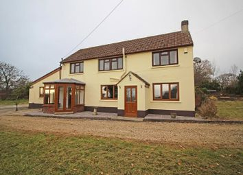 Thumbnail 4 bed detached house to rent in Shebbear, Beaworthy