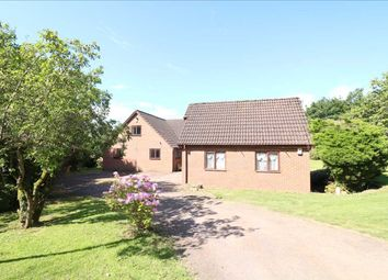 Thumbnail 4 bed bungalow for sale in Phocle Green, Priors Way, Ross-On-Wye