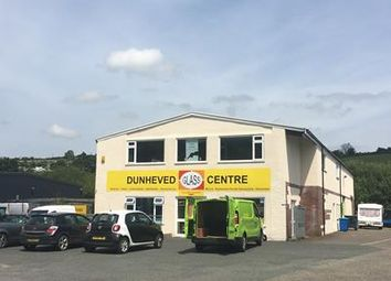Thumbnail Light industrial to let in Unit 13, Newport Industrial Estate, Launceston, Cornwall