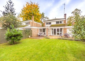 The Paddock, Crowthorne, Berkshire RG45. 3 bed detached house
