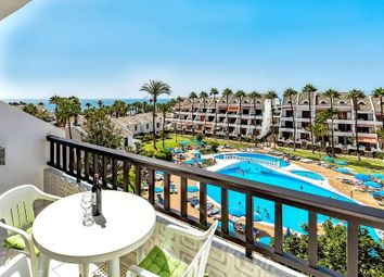 Thumbnail 1 bed apartment for sale in Las Americas, Tenerife, Spain