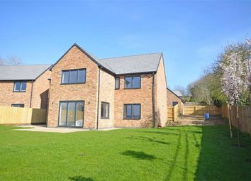 Thumbnail 5 bedroom detached house for sale in Harbidges Lane, Long Buckby, Northampton