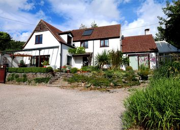 Thumbnail 4 bed detached house for sale in Apple Tree Cottage, Ashcombe Road, Higher Dawlish Water