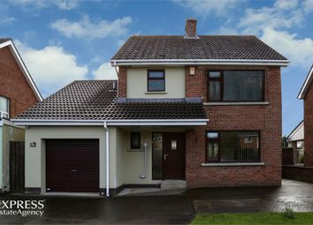 Thumbnail 3 bed detached house for sale in Greenhaw Road, Londonderry