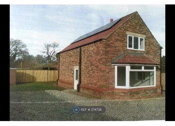 Thumbnail 3 bed detached house to rent in St Johns Grove, York
