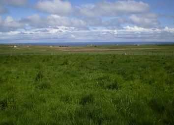 Thumbnail Land for sale in House Site At Hillside, Auckengill