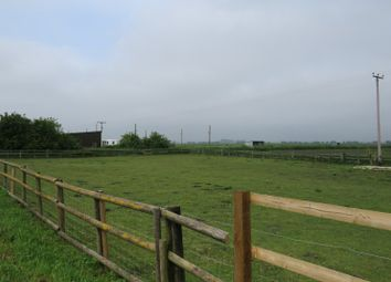 Thumbnail Land for sale in Land Adj To Lotsend, Great Fen Road, Soham, Ely, Cambridgeshire