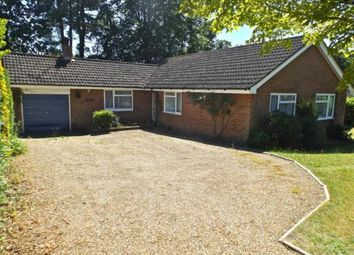Thumbnail 3 bed bungalow for sale in Headley Down, Hampshire