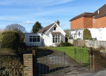 Thumbnail 3 bed detached bungalow to rent in Church Street, Rudgwick, Horsham