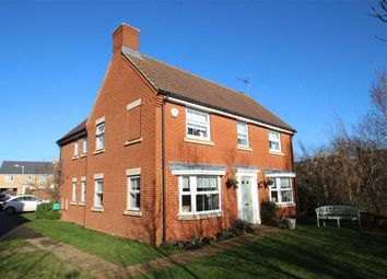 Thumbnail 4 bedroom detached house for sale in Banthorpe Grove, Grange Farm, Kesgrave, Ipswich