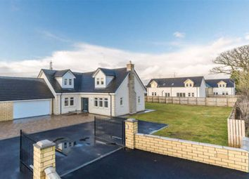 Thumbnail 4 bedroom detached house for sale in The Oaks, Moss Road, Falkirk