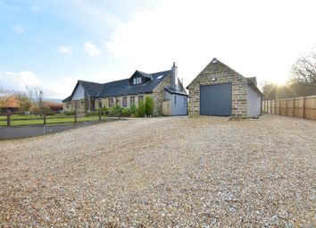 5 bed detached bungalow for sale in Adderley Place, Glossop SK13